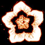 Dblue-Flower